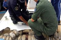 إحباط تهريب 345 كلغ من الشيرا واعتقال إسبانيين بباب سبتة