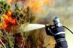 منطقة الريف الأكثر تضررا من حرائق الغابات خلال صيف 2021