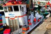 قطاع الصيد البحري بالحسيمة يواصل الاشتغال بانتظام في احترام تام للتدابير الوقائية